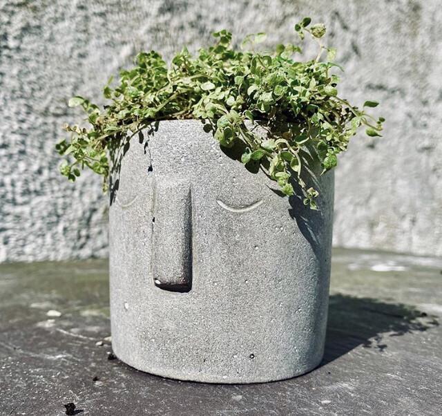 Hermione Face Pot