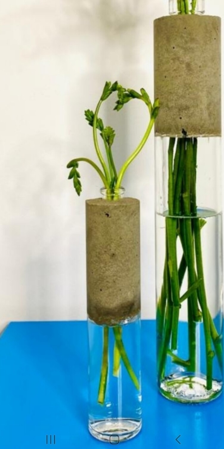 Medium Concrete Bottle Vases