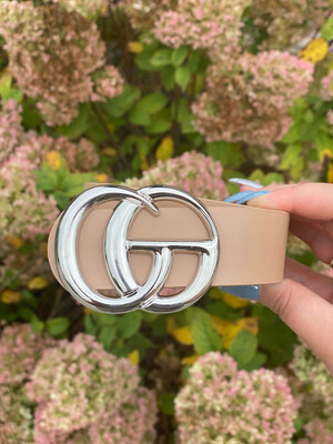 Taupe Shiny Silver Belt