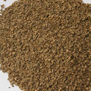 Coriander Seed Kibbled