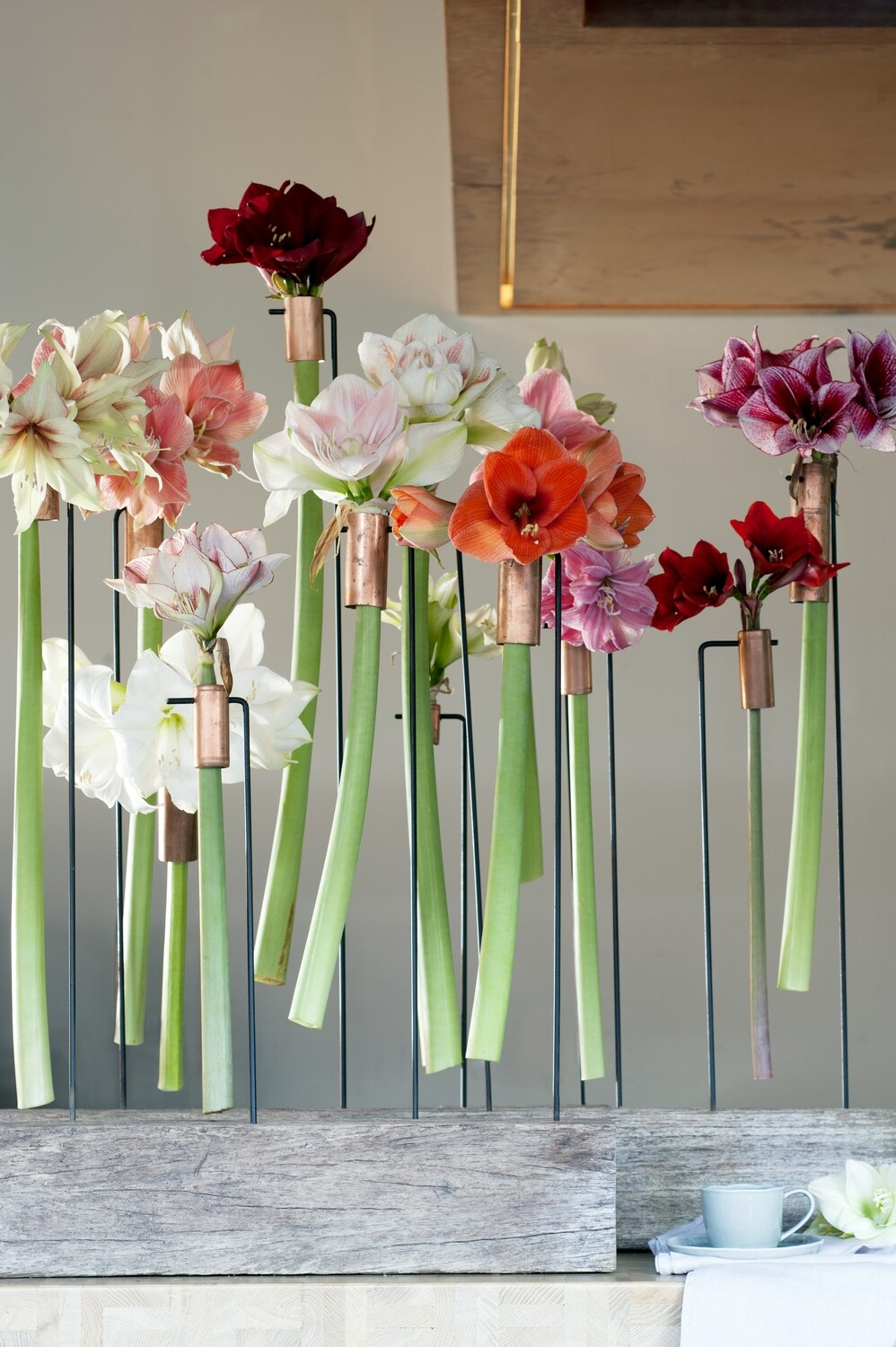 Floristry Taster Course
