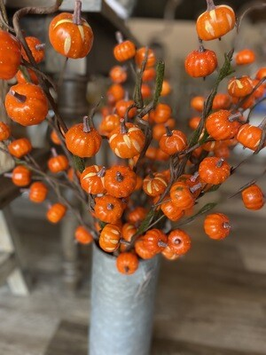 Orange Mini Pumpkin Branch