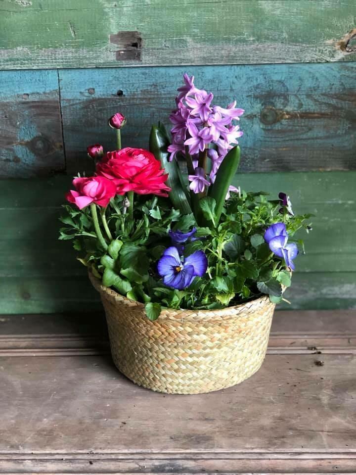 4-27 Community Helper Gift of the Week: Pretty Spring Planter
