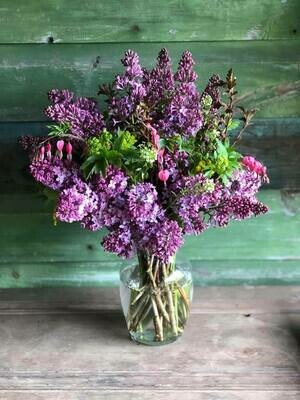 5-18 Community Helper Gift of the Week: Big Bunch of Lilacs! (plus some other stuff)