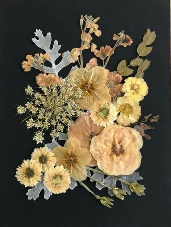 Pressed Flower Kit: Romantic Neutrals