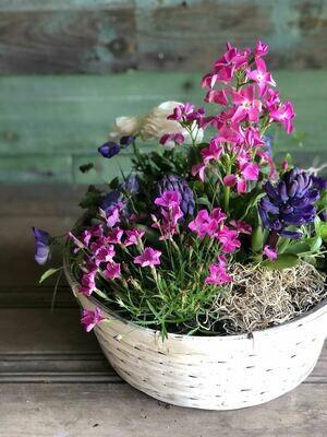 Seasonal Flower Planter - 12 inch
