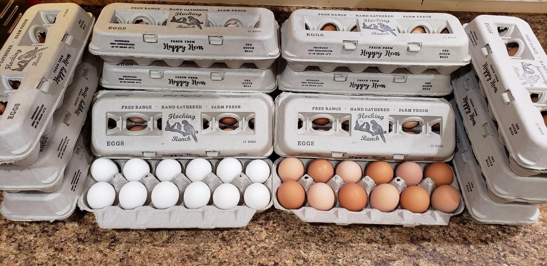 One Dozen Pasture Raised Eggs