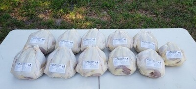 Pre-Order Organic fed Pasture Raised Whole Chicken (Aug)