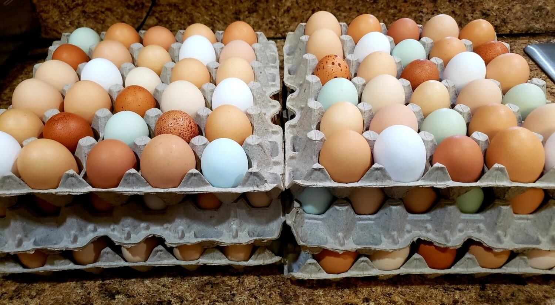5 doz Pasture raised eggs