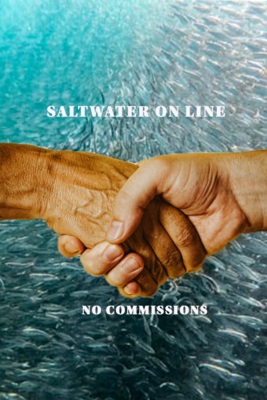 POST ON SALTWATER ON LINE HERE
