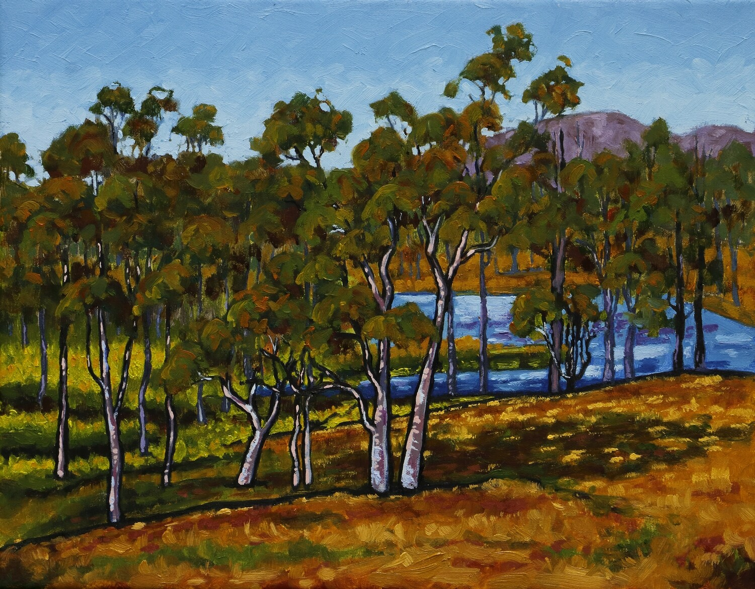After the Summer Rains - Original Art Oil Painting Australian Landscape