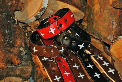 Lederhalsband Schweiz