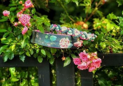 Halsband Denim- Jeans mit Blumenmuster