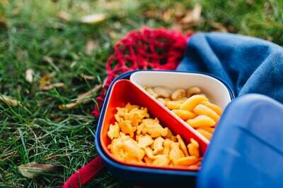 Go Square Bento Lunch Box - Royal Blue + White & Persimmon Compartments