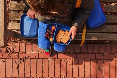 Go Rectangular Bento Lunch Box - Royal Blue