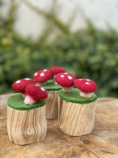Fet Mushroom - 6 Piece Set: Mediumn