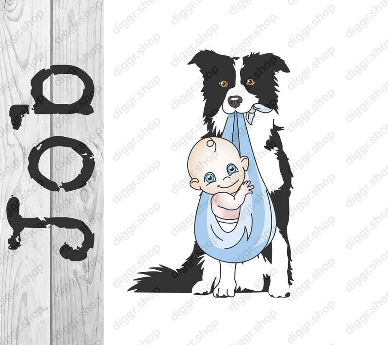 Geboortekaartje Border collie (304)