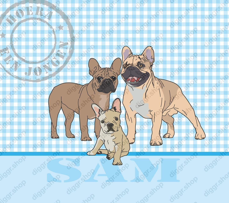 Geboortekaartje French bull dog (314)
