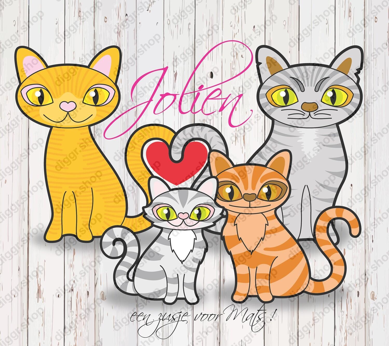 Geboortekaartje Katten 900 (Tweeling) (335)