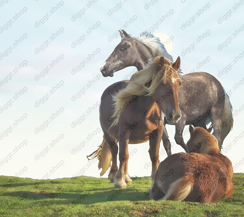 Geboortekaartje Mountain horses (391)