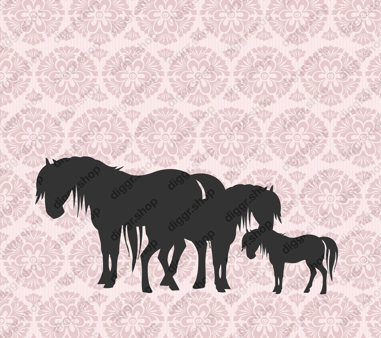 Geboortekaartje Paarden (404)