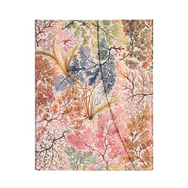 Paperblanks Anemone midi - gelijnd