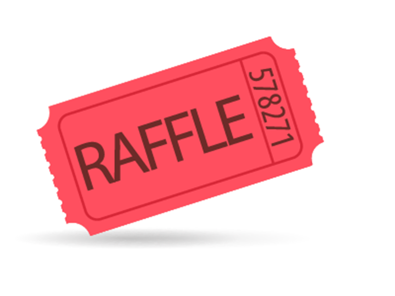 1 Raffle Ticket - Individual