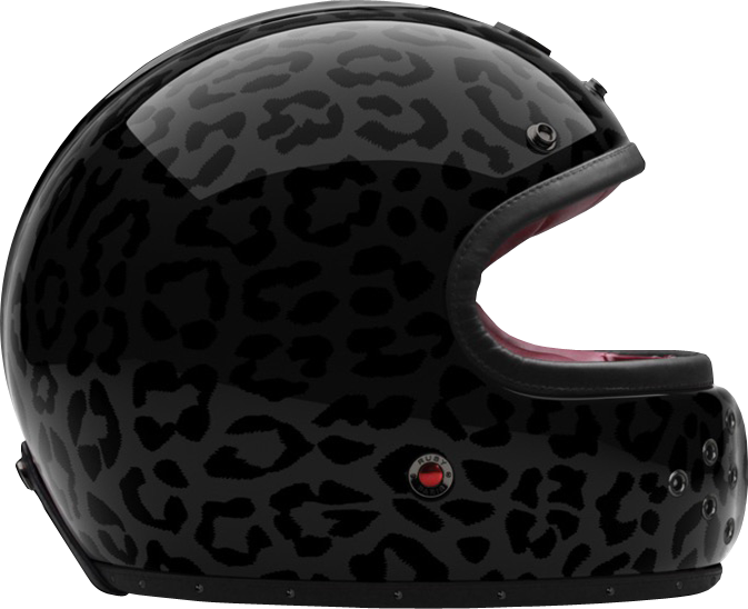 FULL FACE HELMET PANTHER
