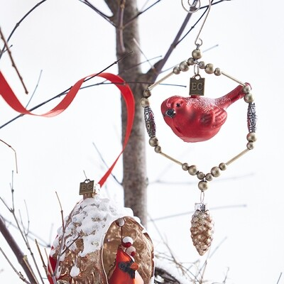 Red Cardinal with Pinecone