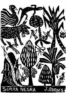 The Jungle Postcard