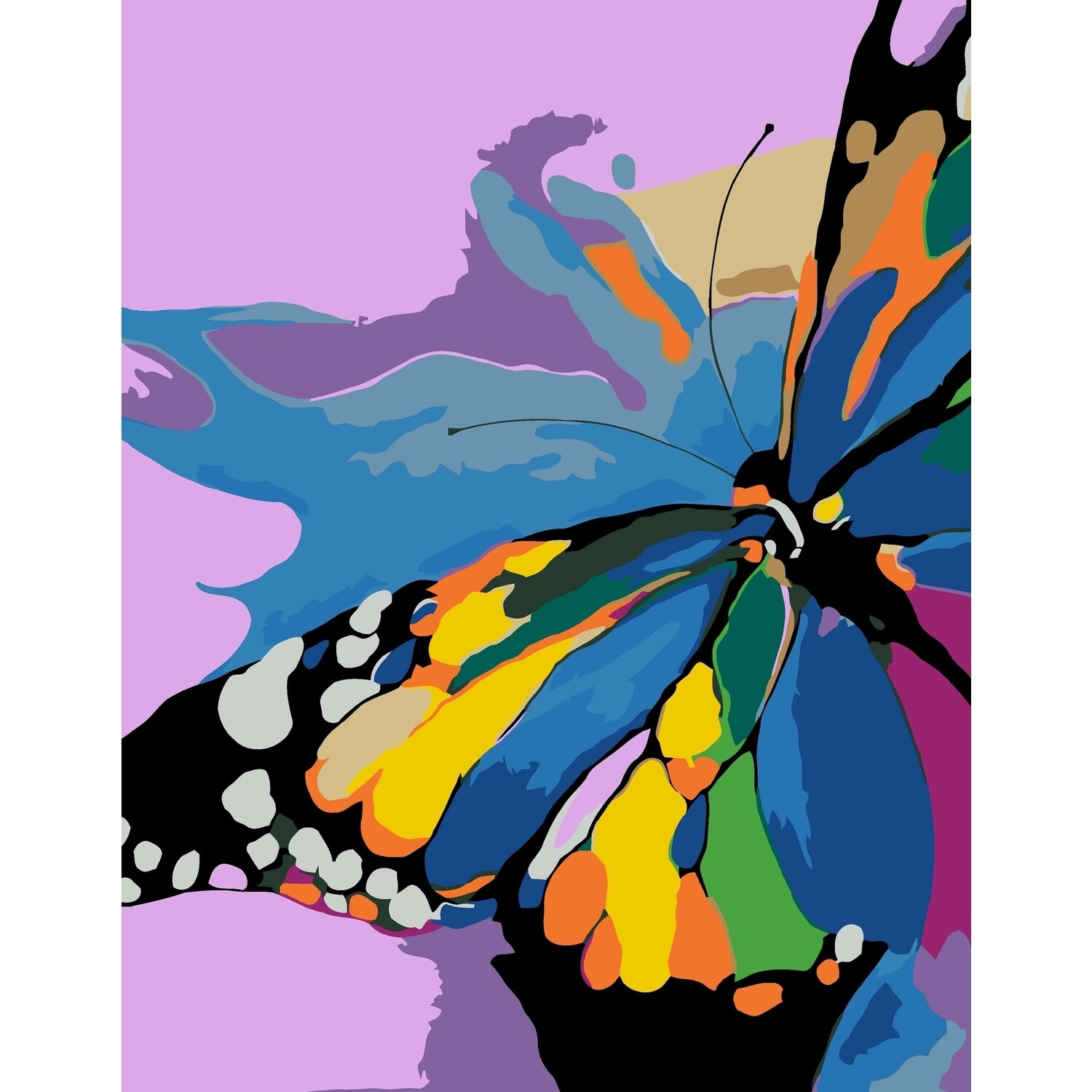 DIY Paint by Numbers Kit Butterfly