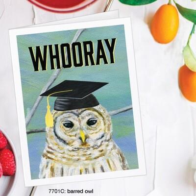 Whooray Owl