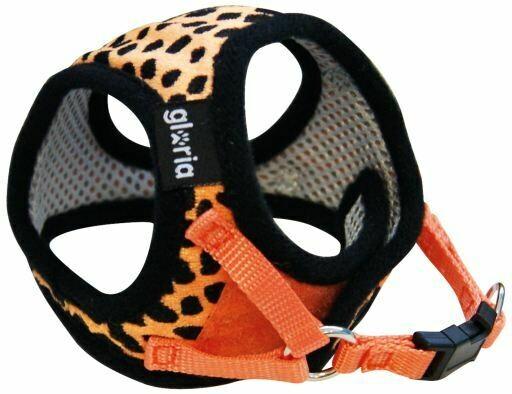 Oranje Leopard 20-25cm
