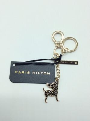 Paris Hilton chihuahua black