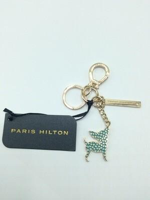 Paris Hilton chihuahua aqua