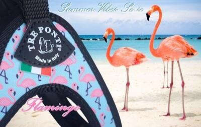 Liberta flamingo
