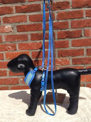 Puppydog blauw