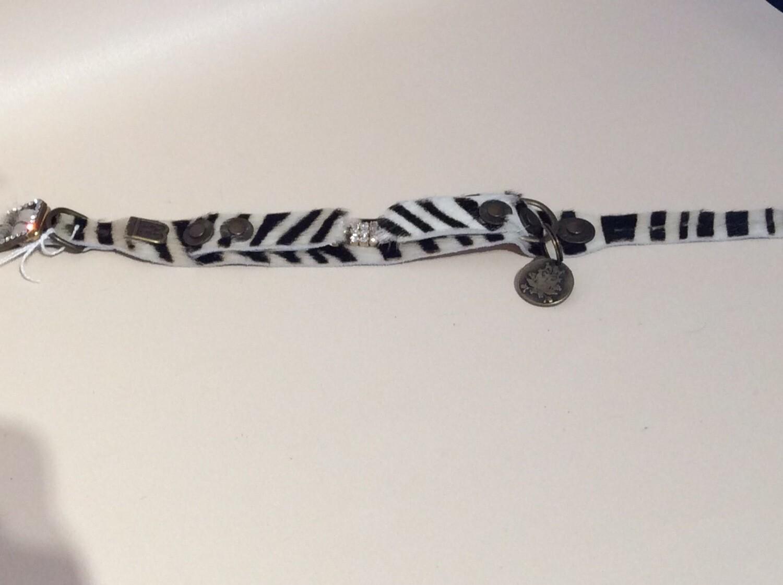 Marculino zebra