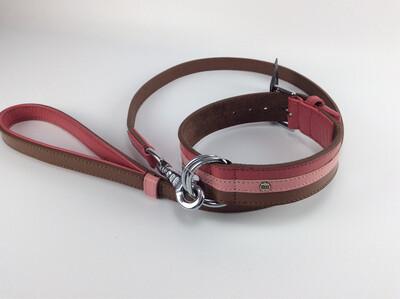 Brave 55cm + leash