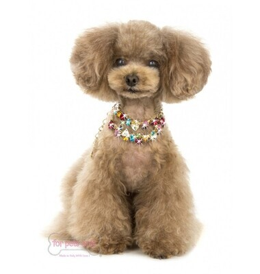 Fabulous Doggy bijoux mix of colours