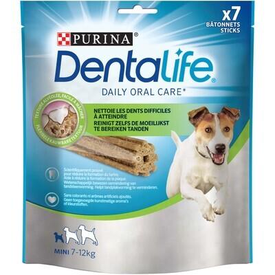 Dentalife mini