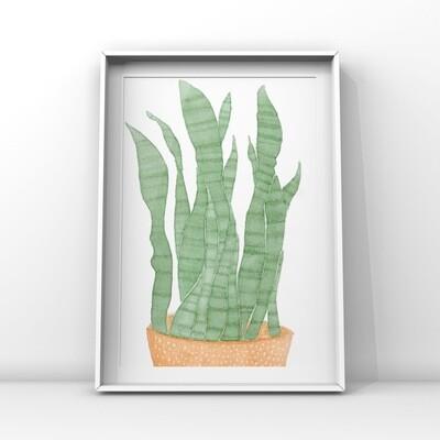 Svärmorstunga akvarell, A5- print
