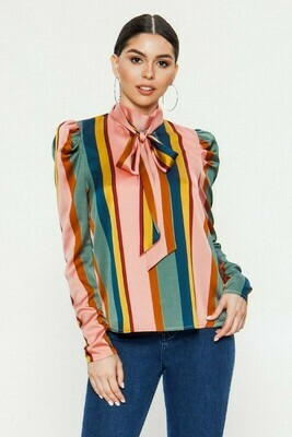 Silky Multicolored Blouse