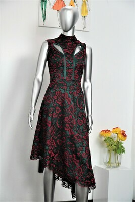 Asymmetrical Lace and Silk Dress