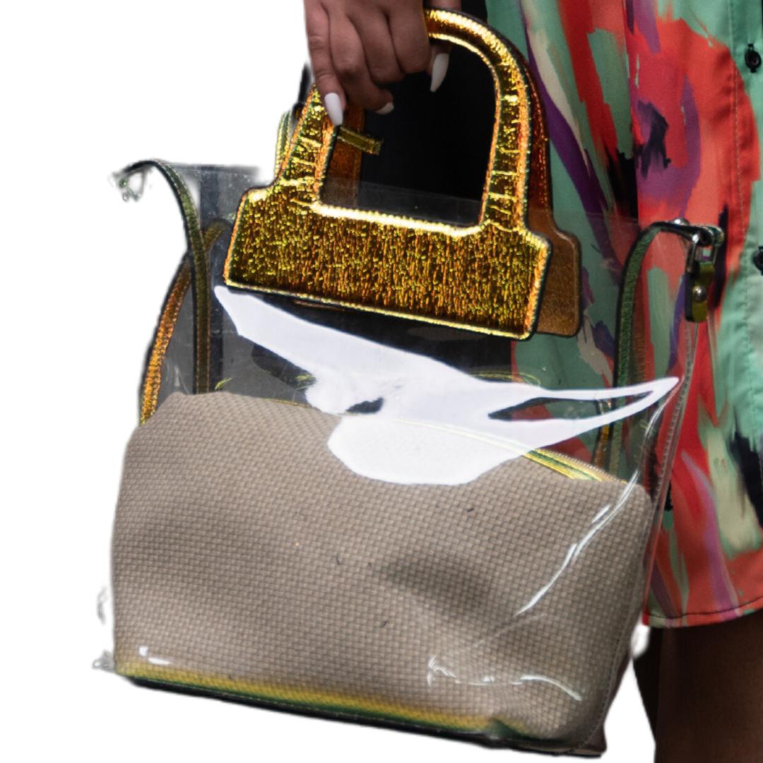 Iridescent Clear Bag
