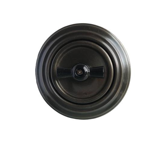 Aged bronze rotary switch