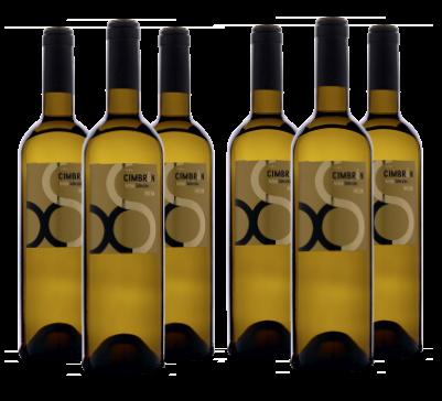 Caja de 6 Botellas de VIÑA CIMBRON SELECCIÓN