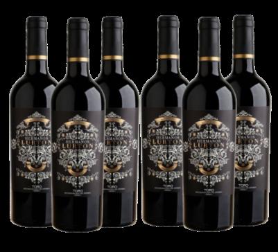 Caja de 6 Botellas de Hermanos Lurton EL ALBAR LURTON TORO