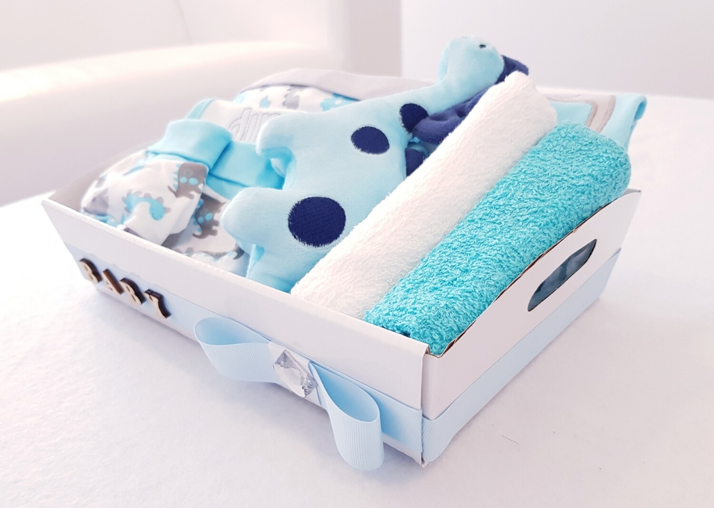 DINOSAUR themed baby bundle