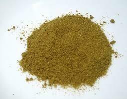 Bulk Organic Coriander Powder